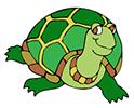 stmark-turtle